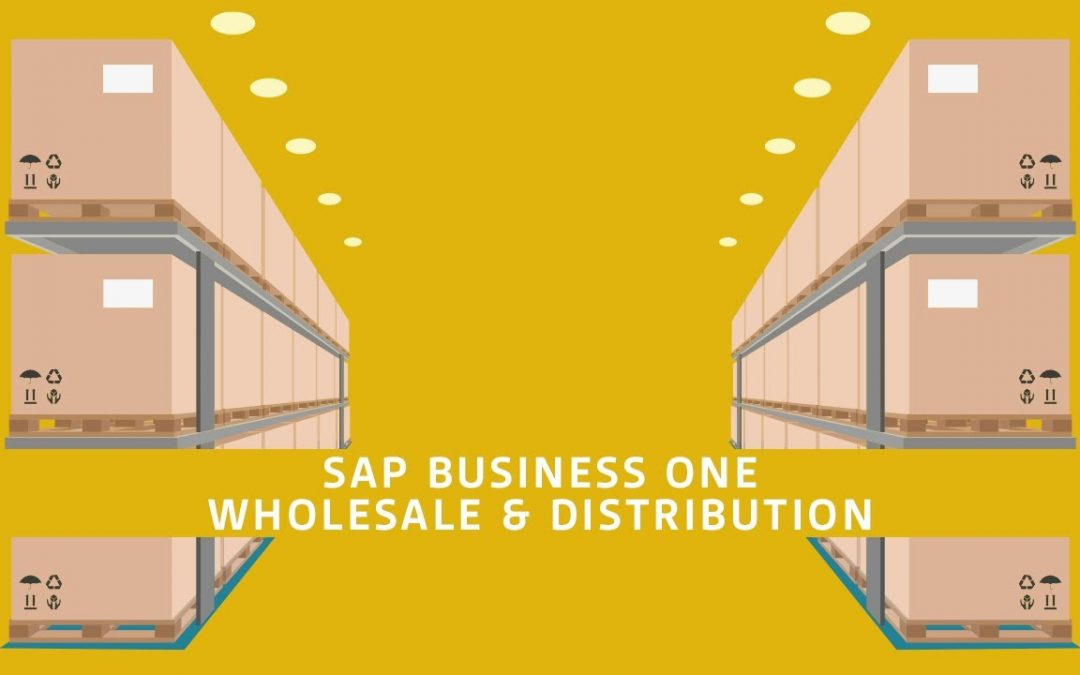 How The Wholesalers Get Benefits From SAP Business One In Dubai?