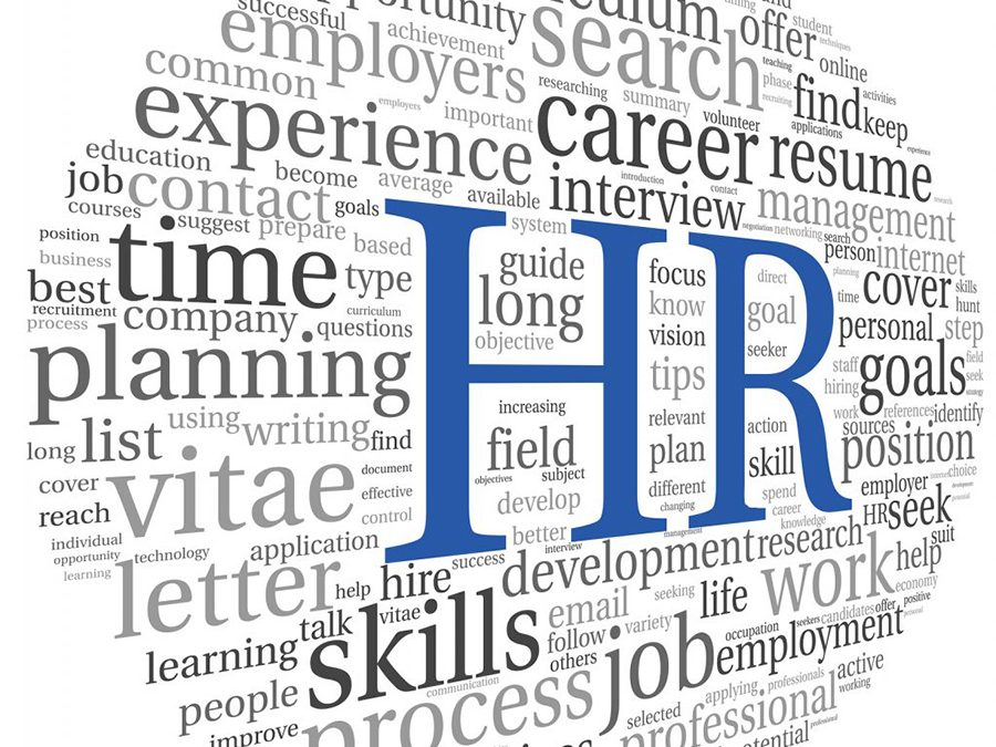 Human Resource Software For Revamping Your HR Department In The UAE