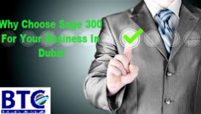 Why Choose Sage 300 For Your Business In Dubai