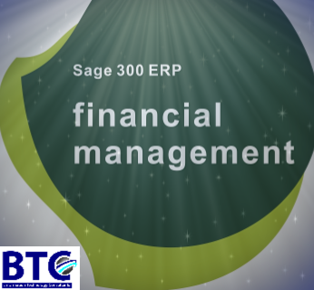 financial management with sage 300 erp