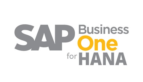 SAP B1 HANA DUBAI