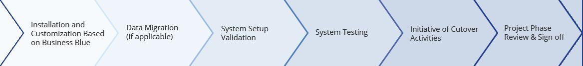 SAP B1 project realization